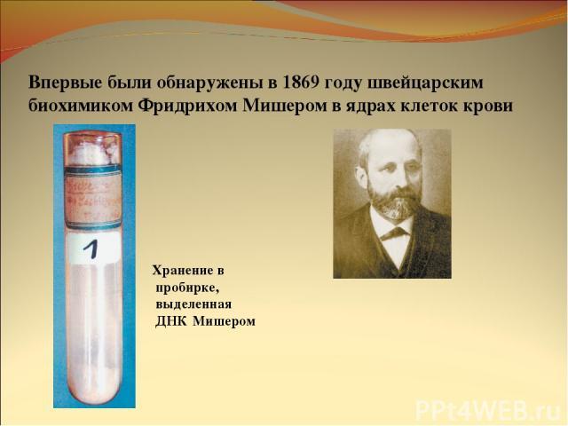 Впервые были обнаружены в 1869 году швейцарским биохимиком Фридрихом Мишером в ядрах клеток крови Хранение в пробирке, выделенная ДНК Мишером