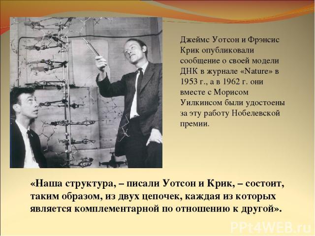 Джеймс Уотсон и Фрэнсис Крик опубликовали сообщение о своей модели ДНК в журнале «Nature» в 1953 г., а в 1962 г. они вместе с Морисом Уилкинсом были удостоены за эту работу Нобелевской премии. «Наша структура, – писали Уотсон и Крик, – состоит, таки…