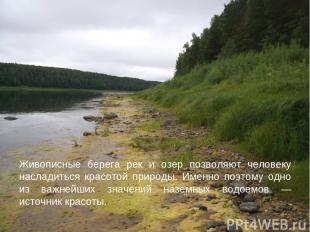 Живописные берега рек и озер позволяют человеку насладиться красотой природы. Им