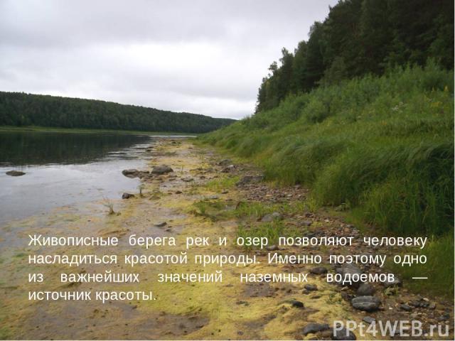 Живописные берега рек и озер позволяют человеку насладиться красотой природы. Именно поэтому одно из важнейших значений наземных водоемов — источник красоты.