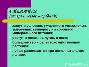 4.МЕЗОФИТЫ (от греч. мезос – средний) живут в условиях умеренного увлажнения, ум