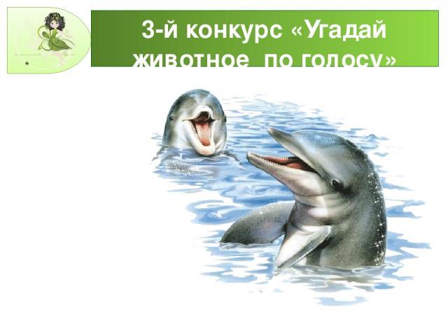 3-й конкурс «Угадай животное по голосу»