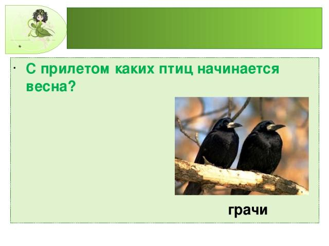 С прилетом каких птиц начинается весна? грачи