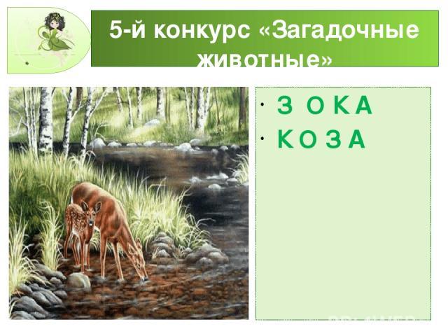 5-й конкурс «Загадочные животные» З О К А К О З А