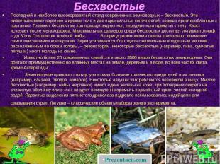 Бесхвостые Последний и наиболее высокоразвитый отряд современных земноводных – б