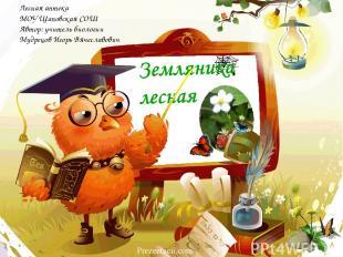 Лесная аптека МОУ Щаповская СОШ Автор: учитель биологии Мудрецов Игорь Вячеславо