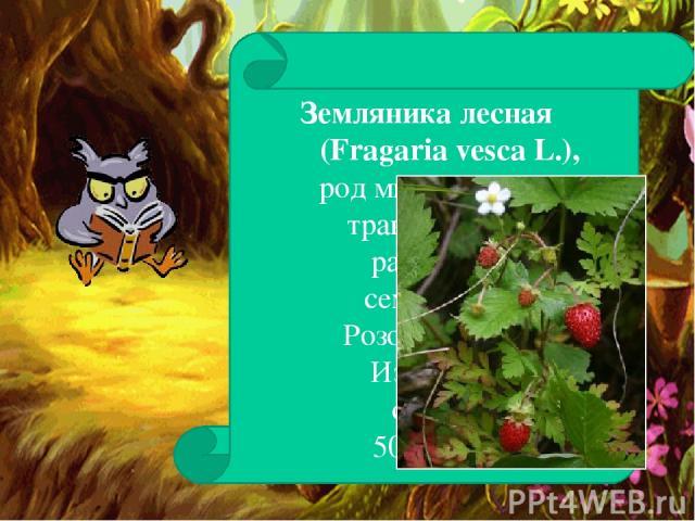Земляника лесная (Fragaria vesca L.), род многолетних травянистых растений семейства Розоцветных. Известно около 50 видов.