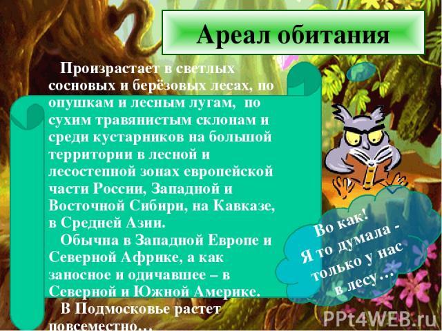 Ареал обитания Произрастает в светлых сосновых и берёзовых лесах, по опушкам и лесным лугам, по сухим травянистым склонам и среди кустарников на большой территории в лесной и лесостепной зонах европейской части России, Западной и Восточной Сибири, н…