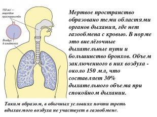 Мертвое пространство образовано теми областями органов дыхания, где нет газообме
