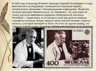 В 1928 году Александр Флеминг проводил рядовой эксперимент в ходе многолетнего и