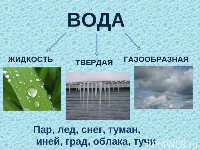 ВОДА ЖИДКОСТЬ ТВЕРДАЯ ГАЗООБРАЗНАЯ Пар, лед, снег, туман, иней, град, облака, тучи