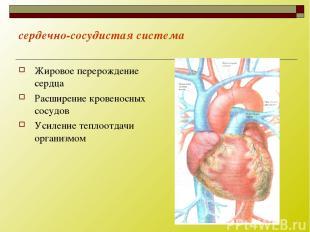 сердечно-сосудистая система Жировое перерождение сердца Расширение кровеносных с