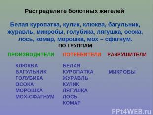 Распределите болотных жителей Белая куропатка, кулик, клюква, багульник, журавль