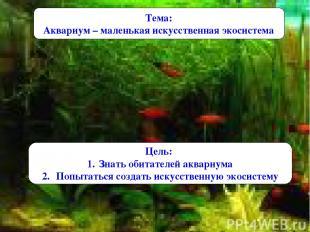 Тема: Аквариум – маленькая искусственная экосистема Цель: Знать обитателей аквар