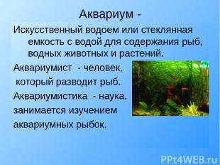 Аквариум - Искусственный водоем или стеклянная емкость с водой для содержания ры