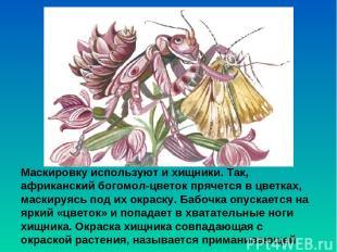 Маскировку используют и хищники. Так, африканский богомол-цветок прячется в цвет