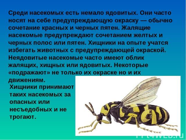 Среди насекомых есть немало ядовитых. Они часто носят на себе предупреждающую окраску — обычно сочетание красных и черных пятен. Жалящие насекомые предупреждают сочетанием желтых и черных полос или пятен. Хищники на опыте учатся избегать животных с …