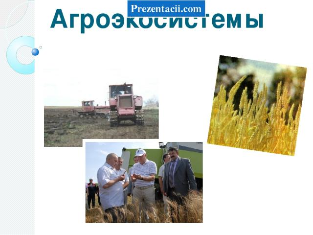 Агроэкосистемы Prezentacii.com