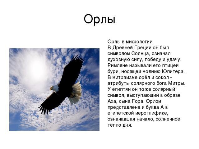Орлы Орлы в мифологии. В Древней Греции он был символом Солнца, означал духовную силу, победу и удачу. Римляне называли его птицей бури, носящей молнию Юпитера. В митраизме орёл и сокол - атрибуты солярного бога Митры. У египтян он тоже солярный сим…