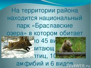 На территории района находится национальный парк «Браславские озера» в котором о