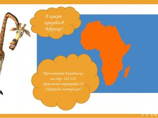 А какая природа в Африке? Прочитайте в учебнике на стр. 114-118 фрагмент парагра
