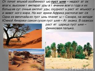 Отличительной особенностью пустыни – недостаток влаги, высокие температуры в теч