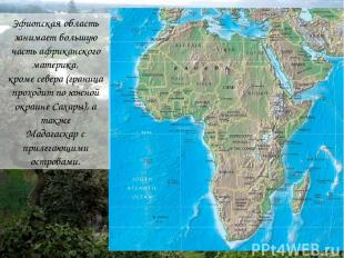 Эфиопская область занимает большую часть африканского материка, кроме севера (гр