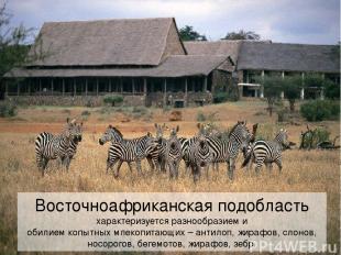 Восточноафриканская подобласть характеризуется разнообразием и обилием копытных