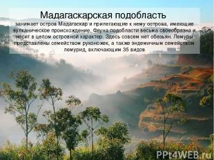 Мадагаскарская подобласть занимает остров Мадагаскар и прилегающие к нему остров