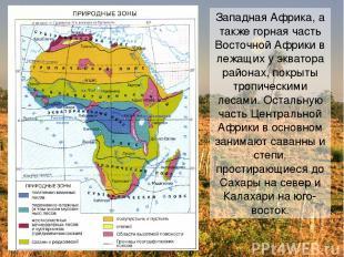 Западная Африка, а также горная часть Восточной Африки в лежащих у экватора райо