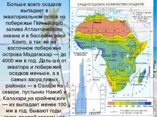 Больше всего осадков выпадает в экваториальном поясе на побережье Гвинейского за