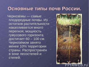 Основные типы почв России. Чернозёмы — самые плодородные почвы. Из остатков раст
