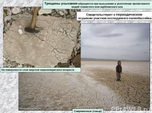Трещины усыхания образуются при высыхании и уплотнении пропитанного водой глинис