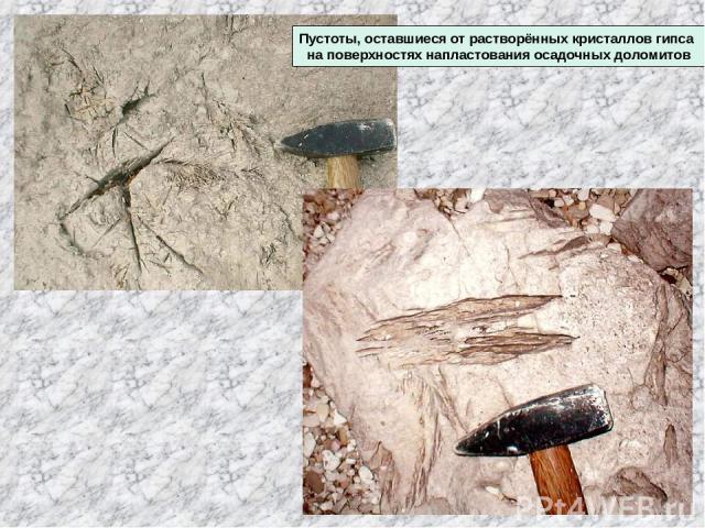 Пустоты, оставшиеся от растворённых кристаллов гипса на поверхностях напластования осадочных доломитов