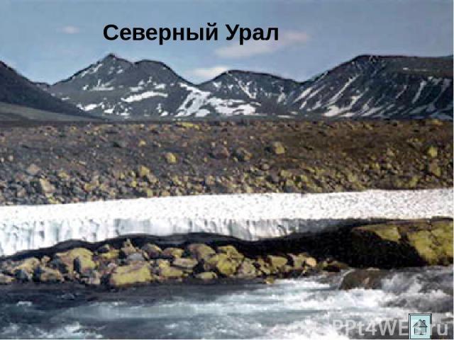 Гора малых болванов Палкинские каменные палатки. Чёртово городище Как могли образоваться такие формы рельефа?