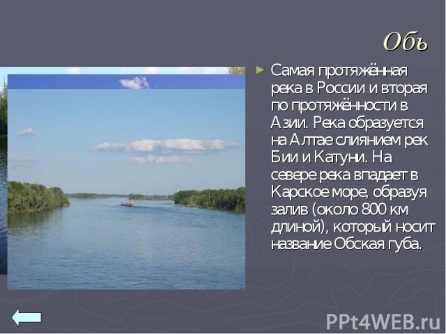 Обь Самая протяжённая река в России и вторая по протяжённости в Азии. Река образуется на Алтае слиянием рек Бии и Катуни. На севере река впадает в Карское море, образуя залив (около 800 км длиной), который носит название Обская губа.