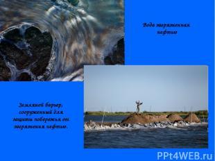 Вода загрязненная нефтью Земляной барьер, сооруженный для защиты побережья от за