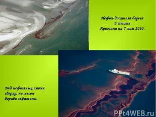 Нефть достигла берега в штате Луизиана на 7 мая 2010.