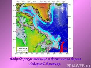 Лабрадорское течение у восточного берега Северной Америки