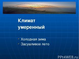 Климат умеренный Холодная зима Засушливое лето Однако в степи нет деревьев, толь