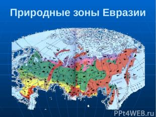 Природные зоны Евразии Природа России очень разнообразна. В направлении с севера