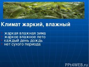 Климат жаркий, влажный жаркая влажная зима жаркое влажное лето каждый день дождь
