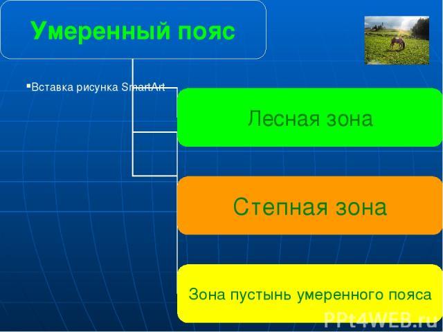 Умеренный пояс Лесная зона Степная зона Зона пустынь умеренного пояса Главная особенность умеренного климата в том, что времена года хорошо различаются.