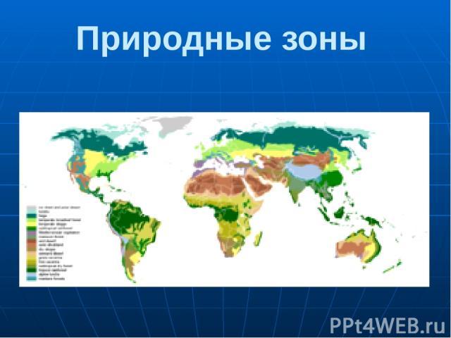 Природные зоны Последовательность природных зон сходна на на различных материках. На рис: Ледяные пустыни. Тундра и лесотундра. Хвойные леса (тайга). Смешанные и широколиственные леса. Лесостепи и степи. Пустыни и полупустыни. Саванны и редколесья. …