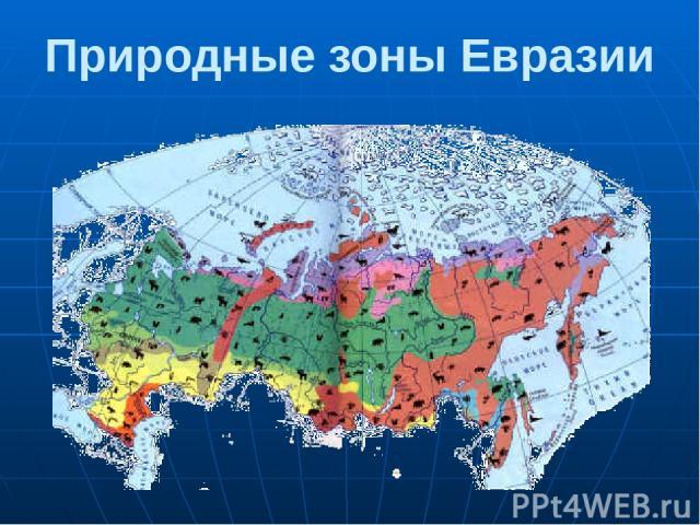 Природные зоны Евразии Природа России очень разнообразна. В направлении с севера на юг сменяются несколько природных зон: ледяная зона, зона тундры, зона лесов, зона степей, зона пустынь. Переходная зона между зонами лесов и степей называется лесостепью