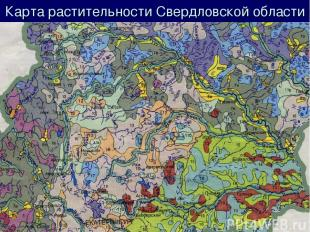 Карта растительности Свердловской области