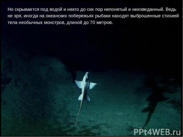 Но скрывается под водой и некто до сих пор непонятый и неизведанный. Ведь не зря, иногда на океанских побережьях рыбаки находят выброшенные стихией тела необычных монстров, длиной до 70 метров.