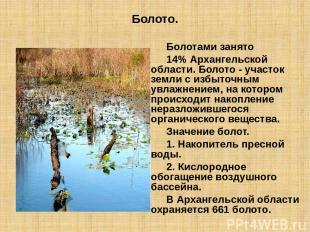 Болото. Болотами занято 14% Архангельской области. Болото - участок земли с избы