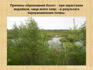 Причины образования болот: - при зарастании водоёмов, чаще всего озёр; - в резул