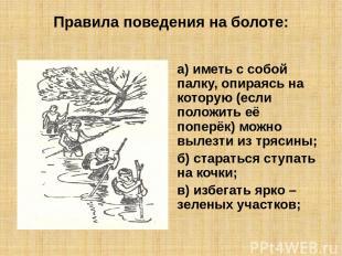 Правила поведения на болоте: а) иметь с собой палку, опираясь на которую (если п